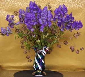 Arrangement with monkshood and berries of Spikenard