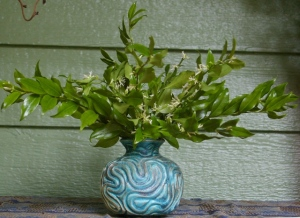 Sweet box branches in a handthrown vase by Dotty Patrick